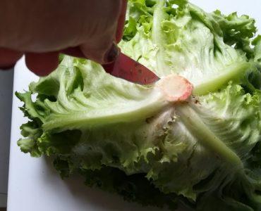 Comment manger la salade verte ?