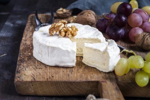 Comment s'appelle la moisissure du fromage ?