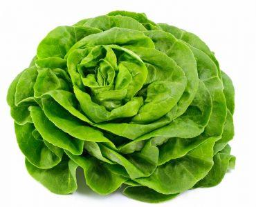 Est-ce que la salade est un légume ?