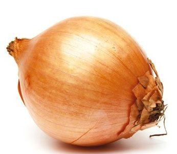 Est-ce que l'oignon est un légume ?
