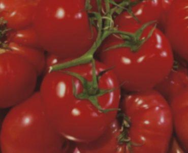 Est-il bon de manger des tomates le soir ?
