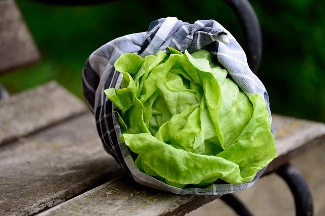 Pourquoi on fatigue la salade ?