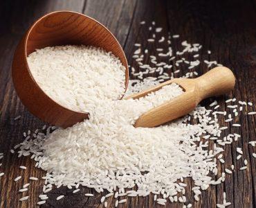 Quel est le meilleur riz pour la paella ?