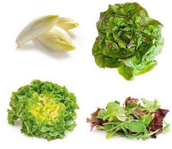 Quelle est la différence entre une salade et une laitue ?