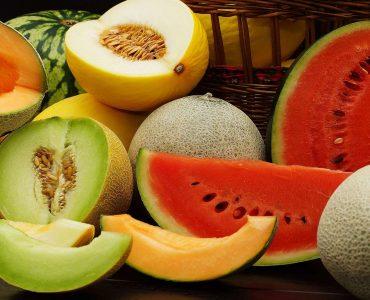 Quelle est la famille du melon ?