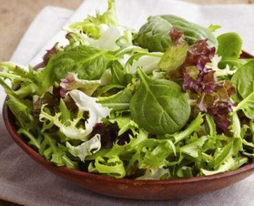 Quelle est la meilleure salade verte ?