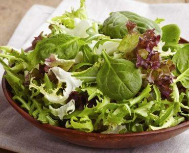 Quelle salade est la plus nutritive ?