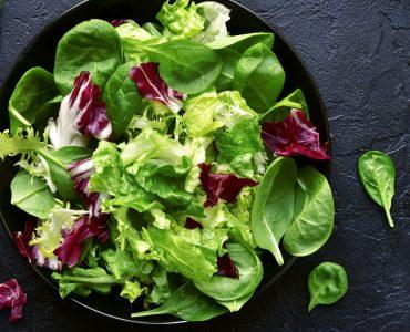 Quels nutriments dans la salade verte ?