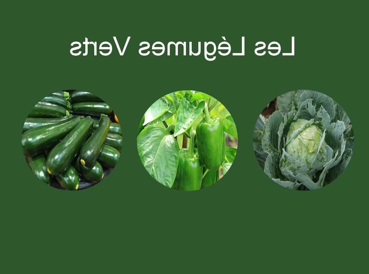 Quels sont les bienfaits du chou vert ?