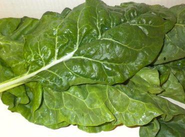 Quels sont les légumes à feuilles vertes ?
